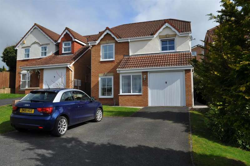 4 Bedrooms Detached House for sale in Macadam Gardens, Penrith