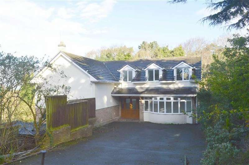 4 Bedrooms Detached House for sale in St Davids Lane, Prenton, CH43