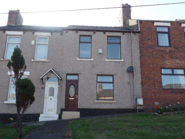 3 Bedrooms Terraced House for sale in ARGENT STREET, EASINGTON, PETERLEE AREA VILLAGES