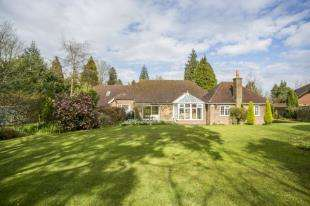 4 Bedrooms Bungalow for sale in Little London Road, Horam, Heathfield, East Sussex