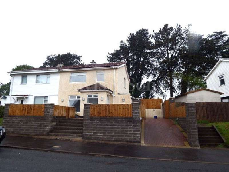 3 Bedrooms Semi Detached House for sale in Stelvio Park Drive, Off Bassaleg Road, Newport. NP20 3ES