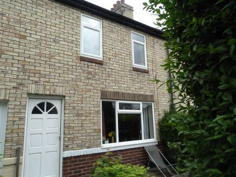 2 Bedrooms Terraced House for sale in Morgy Hill West, Tyne And Wear