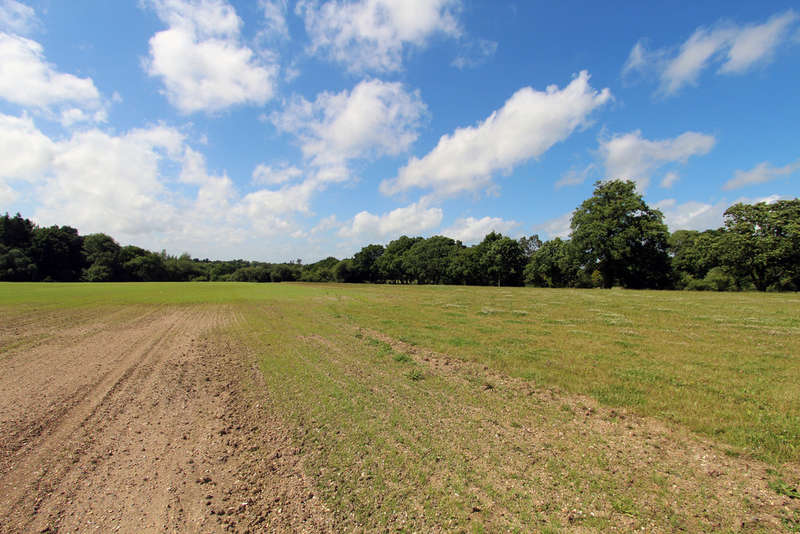 Land Commercial for sale in Winchester Road, Shedfield