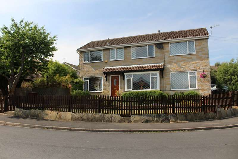 4 Bedrooms Detached House for sale in Kirklees Garth, Farsley, LS28