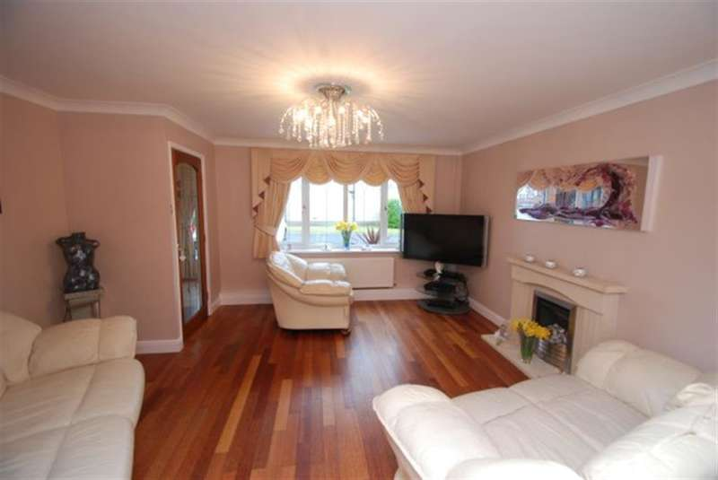 4 Bedrooms Detached House for sale in Lassell Fold, Hyde, , SK14 4UT