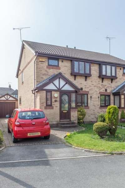 3 Bedrooms Semi Detached House for sale in Warren Hill, Rotherham, South Yorkshire, S61