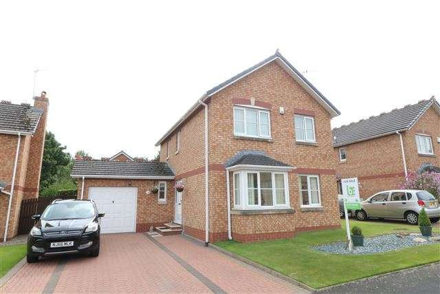3 Bedrooms Detached House for sale in Larch Drive, Stanwix, Carlisle, Cumbria, CA3 9FL