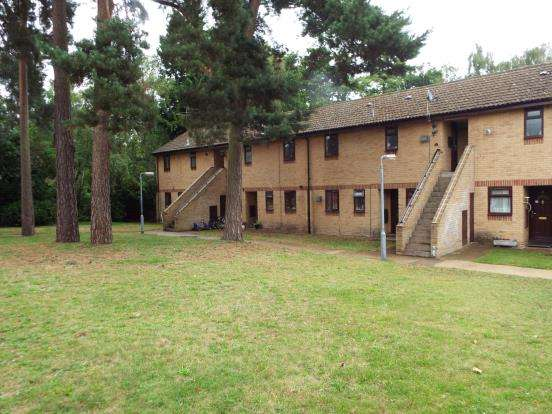 2 Bedrooms Maisonette Flat for sale in Blewburton Walk, Bracknell, Berkshire