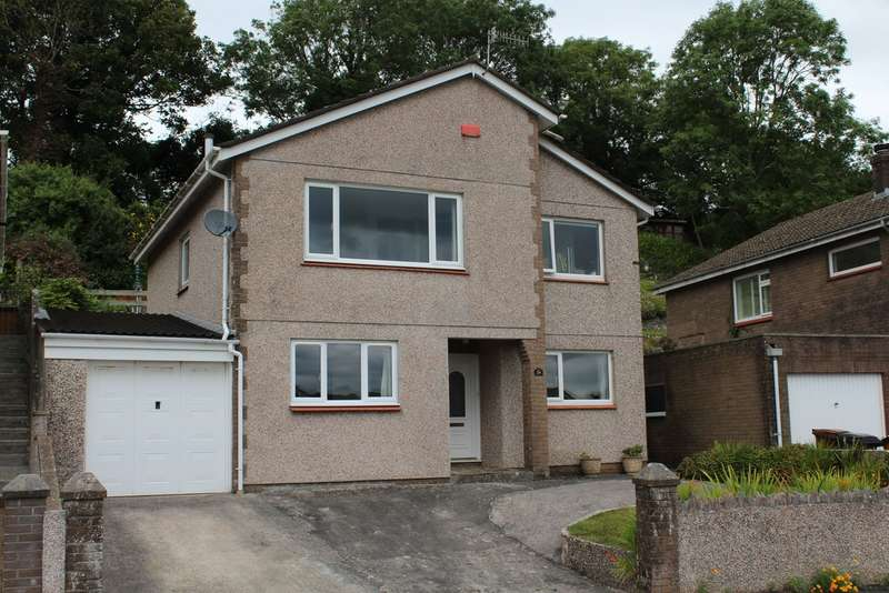 4 Bedrooms Detached House for sale in Elm Tree Park, Yealmpton