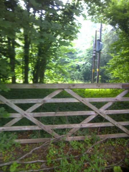 Land Commercial for sale in Green Dene, East Horsley, Surrey, KT24