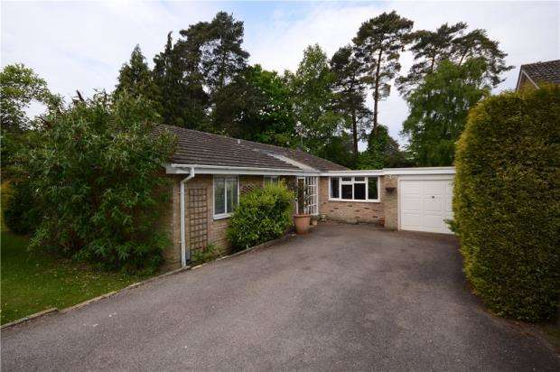 4 Bedrooms Bungalow for sale in Copped Hall Drive, Camberley, Surrey
