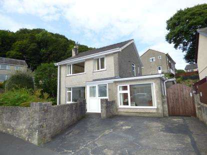 4 Bedrooms Detached House for sale in Morfa Lodge Estate, Porthmadog, Gwynedd, LL49