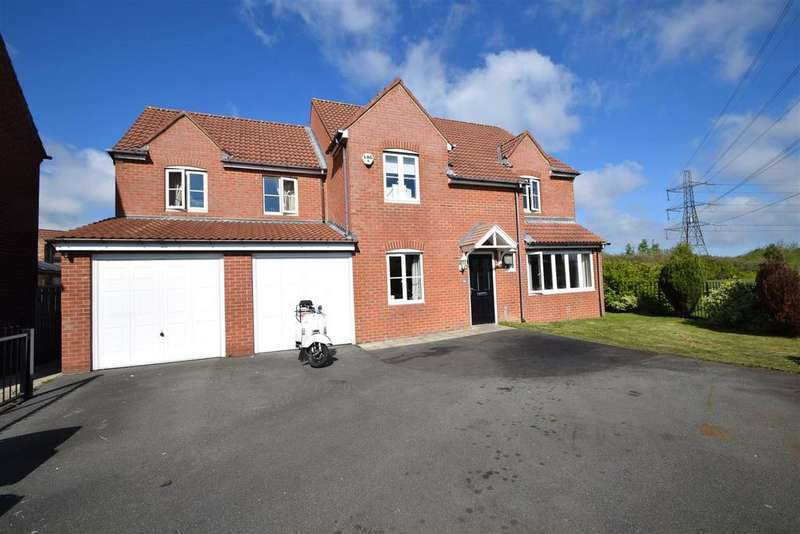 4 Bedrooms Detached House for sale in Heathfield, West Allotment