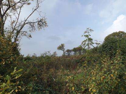 Land Commercial for sale in Wickford, Essex