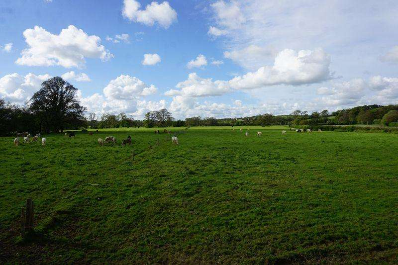 Land Commercial for sale in Tettaridge, Liftondown, Lifton