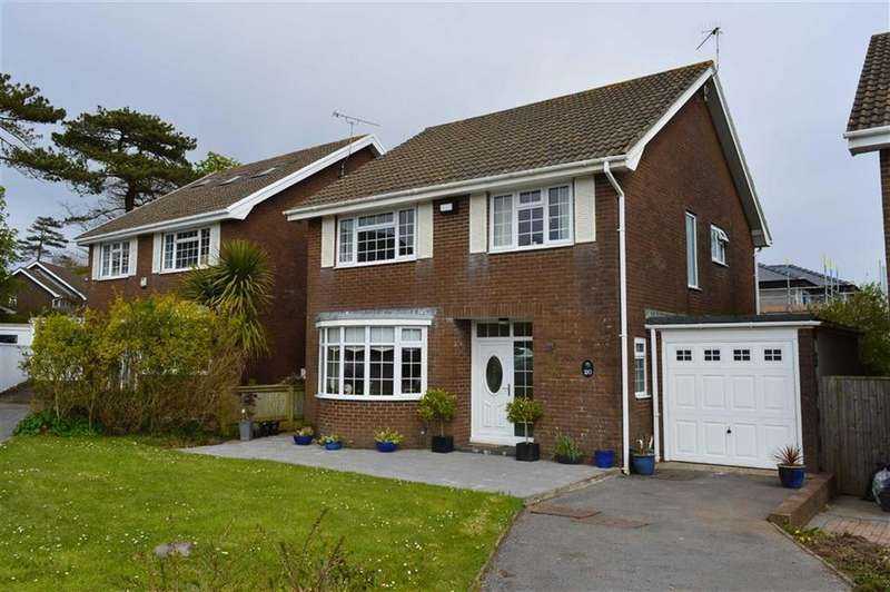 4 Bedrooms Detached House for sale in Eastlands Park, Bishopston, Swansea