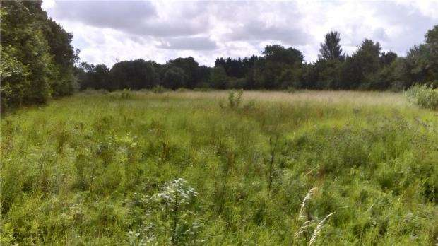 Equestrian Facility Character Property for rent in Paddock At The Butts, Riseley, Bedfordshire