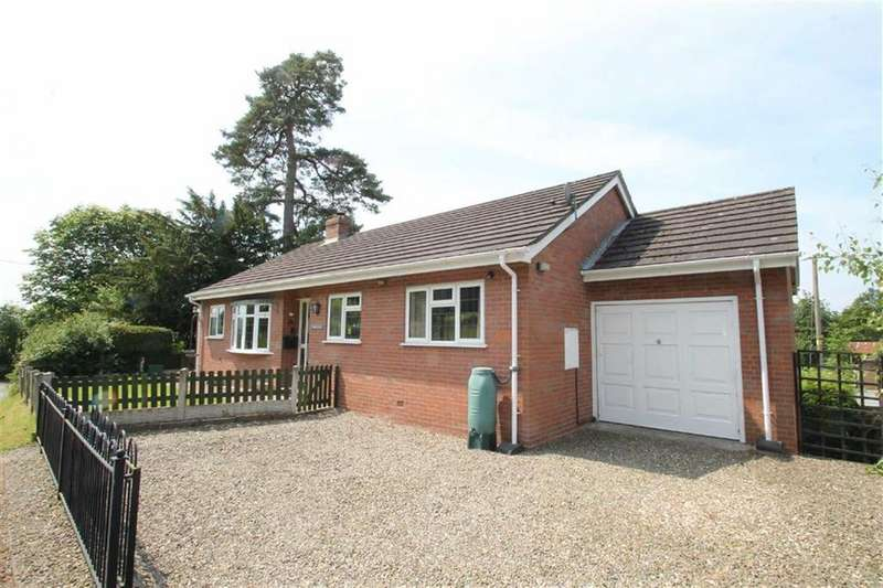 3 Bedrooms Detached Bungalow for sale in Mill Street, Aston On Clun