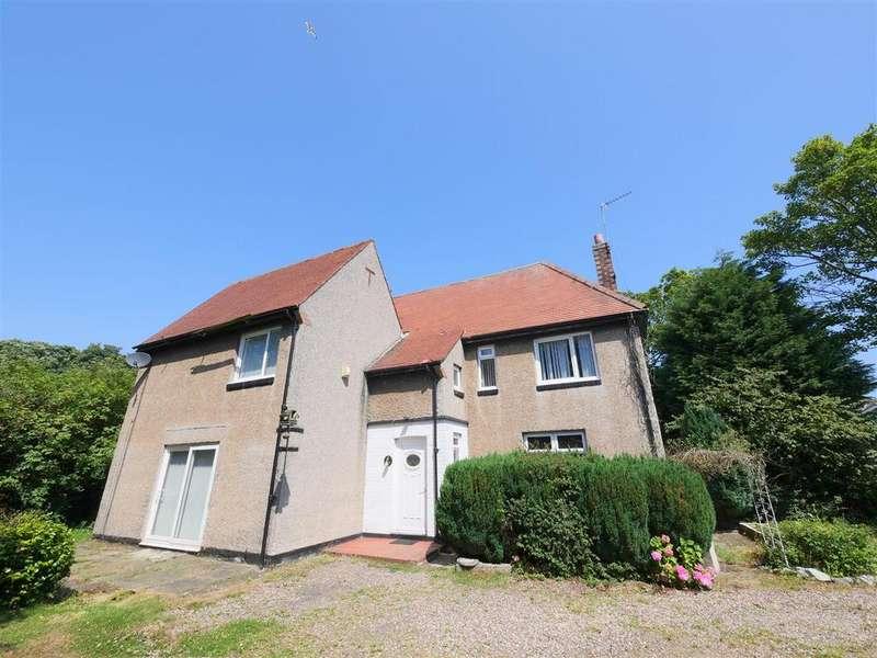 3 Bedrooms Detached House for sale in Gilbert Road, Sunderland