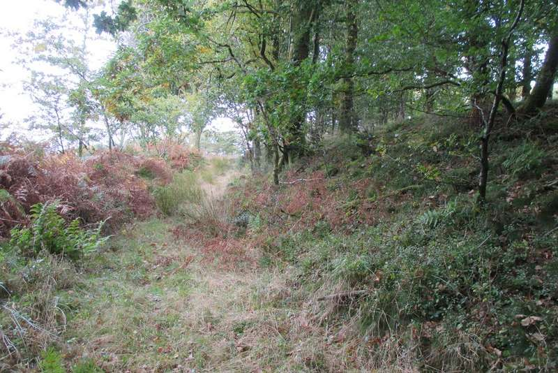 Land Commercial for sale in WOODLAND, Burley Wood, Watergate, Nr Okehampton EX20