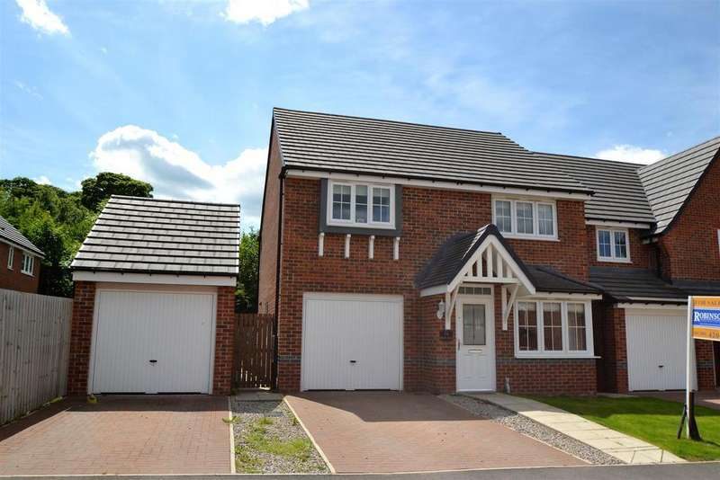 4 Bedrooms Detached House for sale in Morgan Drive, Spennymoor