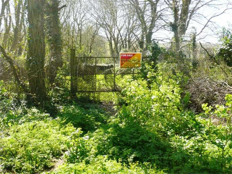 Land Commercial for sale in Plot of Land, Lower St Mary Street, Newport, Pembrokeshire
