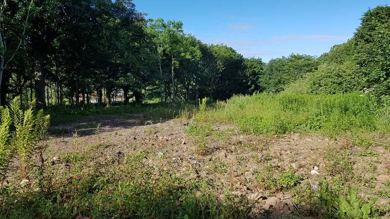 Land Commercial for sale in Dales Road, Peterhead, Aberdeenshire, AB42