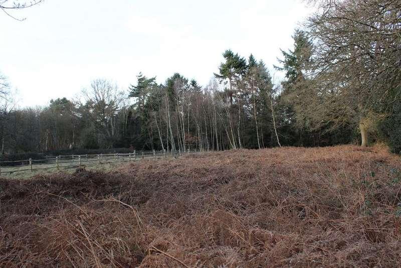 Land Commercial for sale in Warren Lane, Finchampstead, Wokingham, Berkshire, RG40 4HR