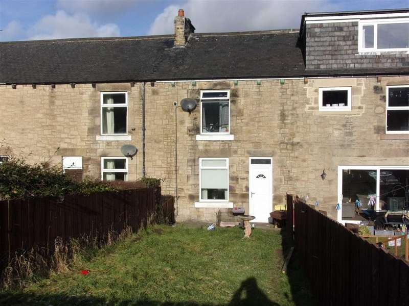 2 Bedrooms Terraced House for rent in Langdale Terrace, Low Westwood, Newcastle Upon Tyne