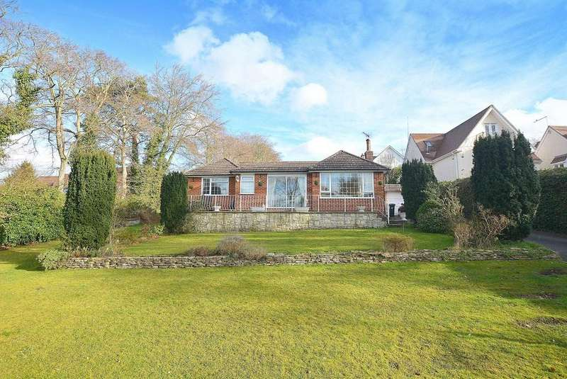 3 Bedrooms Detached Bungalow for sale in Central Avenue, Corfe Mullen