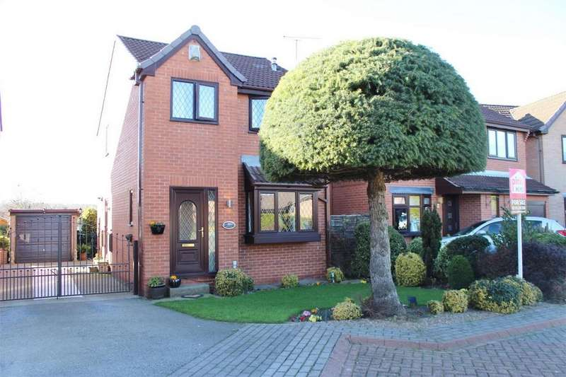 3 Bedrooms Detached House for sale in Parsley Hay Gardens, SHEFFIELD, South Yorkshire