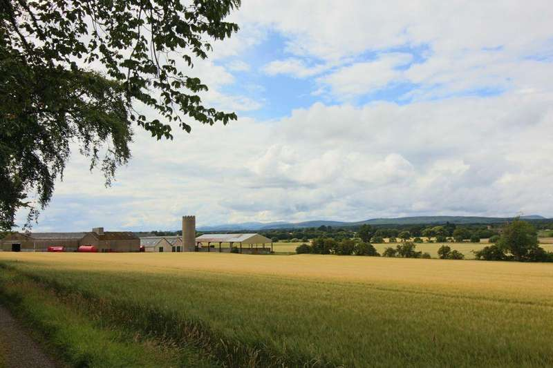 Barn Character Property for sale in The Steading, Balinroich Farm, Fearn, IV20 1RR