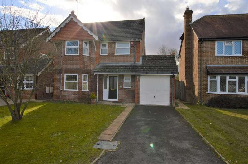 3 Bedrooms Detached House for sale in Jibbs Meadow