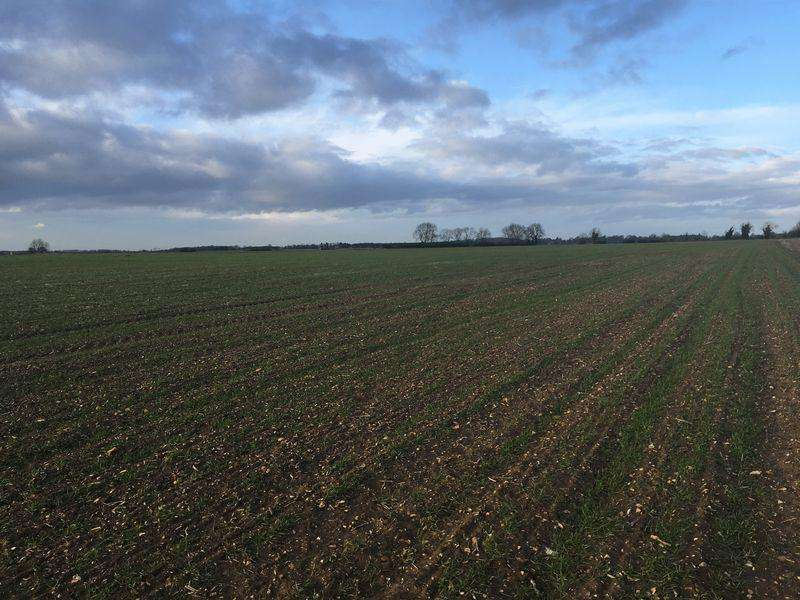 Land Commercial for sale in 36 Acres of Arable Land Wood Enderby