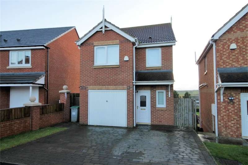 3 Bedrooms Detached House for sale in The Chequers, Consett, County Durham, DH8