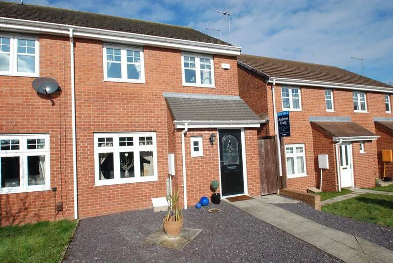 3 Bedrooms Terraced House for sale in Mowbray Villas, South Shields