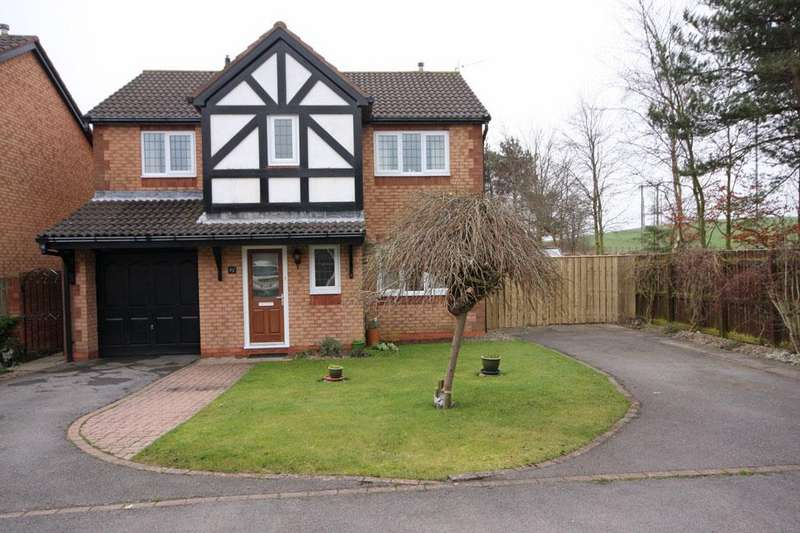 4 Bedrooms Detached House for sale in Fenwick Close, Fellside Meadows, Chester-le-Street DH2 3SU