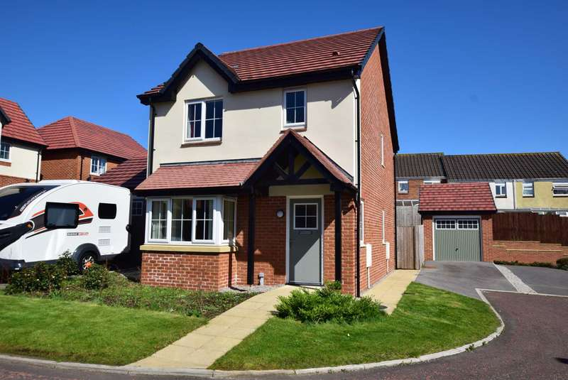 3 Bedrooms Detached House for sale in Oakwood Drive, Wesham