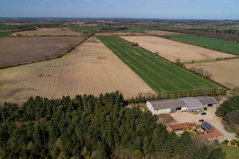 Land Commercial for sale in Common Farm, Fulmodeston, Norfolk