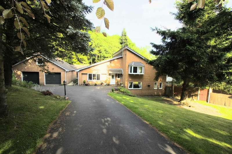 4 Bedrooms Detached House for sale in The Glen, Heaton