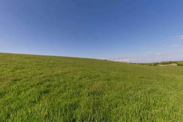 Land Commercial for sale in Crorieshill - Lot 5, Cassillis, Maybole, South Ayrshire, KA19