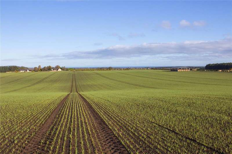 Land Commercial for sale in Lot 2B - Auchenhalrig Farm, Auchenhalrig, Fochabers, Moray, IV32