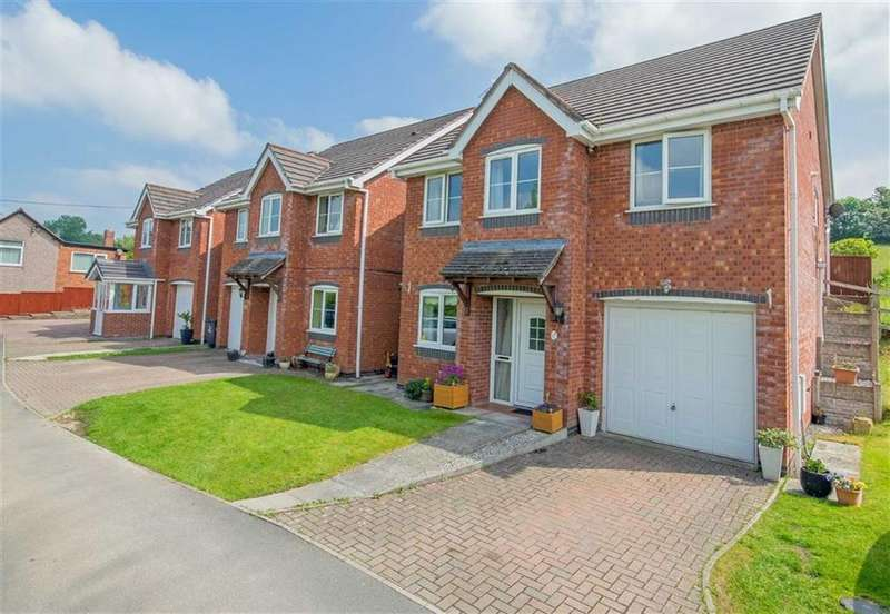 3 Bedrooms Detached House for sale in Dingle View, Pontybodkin, Mold