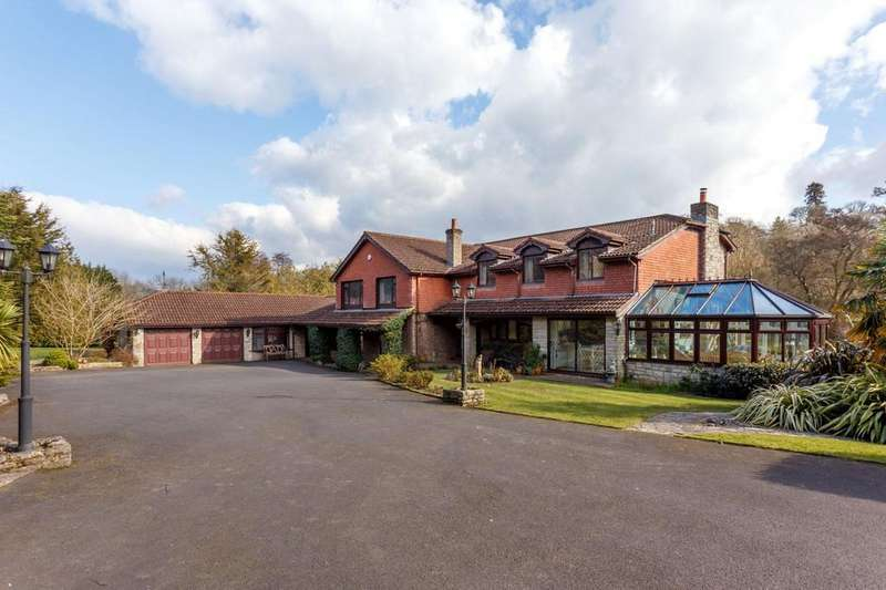 5 Bedrooms Detached House for sale in Queen Anne Drive, Wimborne, Dorset, BH21