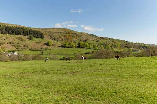 Land Commercial for sale in South Whittlieburn Farm Lot 3, Brisbane Glen, By Largs, North Ayrshire, KA30