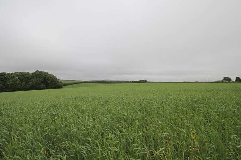 Property for sale in Church Lane, Frithelstockstone, Torrington