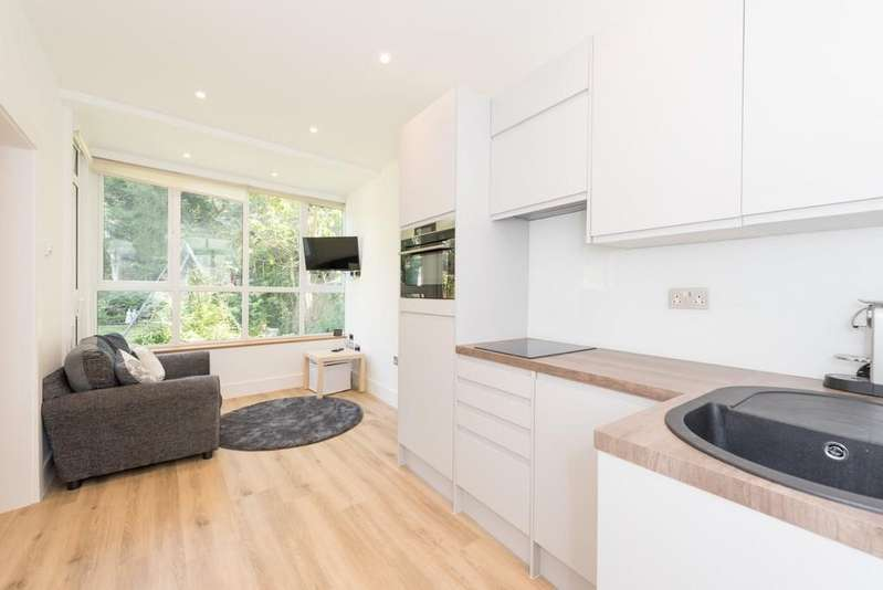 1 Bedroom Apartment Flat for sale in Belsize Park Gardens, NW3