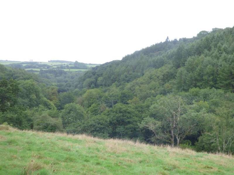 Land Commercial for sale in Trentishoe, Parracombe, Barnstaple