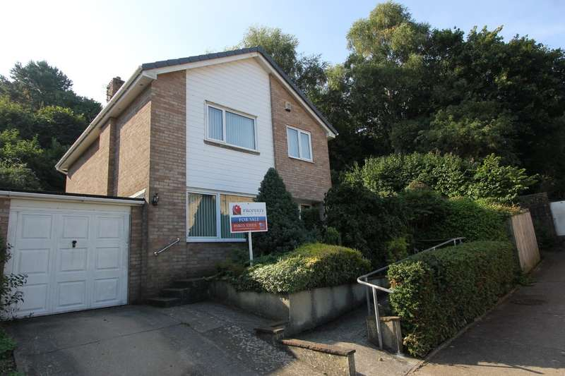 4 Bedrooms Detached House for sale in Bowland Close, Paignton