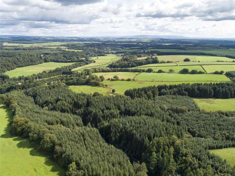 Farm Commercial for sale in The Evertown Portfolio - Lot 7, Cockplay Hagg Hill Forestry, Canonbie, Dumfriesshire, DG14